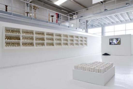 imagen instalación Work in Progress (2013) de Iratxe Jaio y Klass Van Gorkum